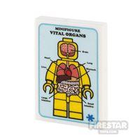 Product shot Custom Printed Tile 2x3 Medical Poster Vital Organs